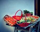 Frutta e verdura estive pronte alla trasformazione